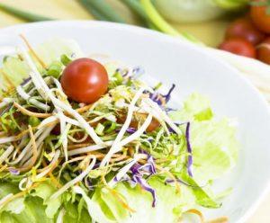 insalata semi di chia, carote, germogli di soia e lattughino