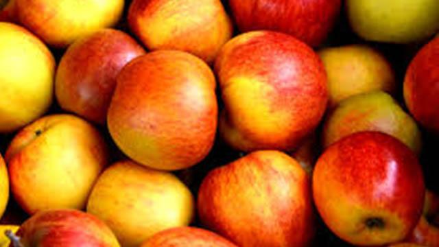 mela, proprietà, valori nutrizionali e ricette
